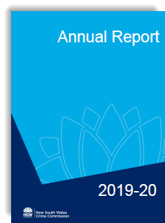 Annual Report image 2019 2020.png